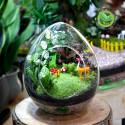 Terrarium Quả Trứng Lớn