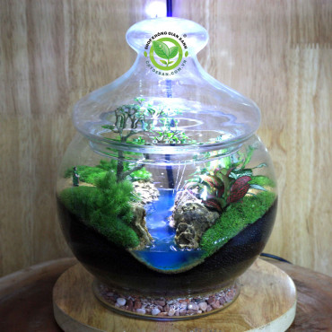 Terrarium Teacher's Day